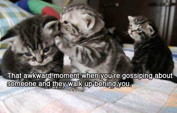 funny-awkward-situation- (2)