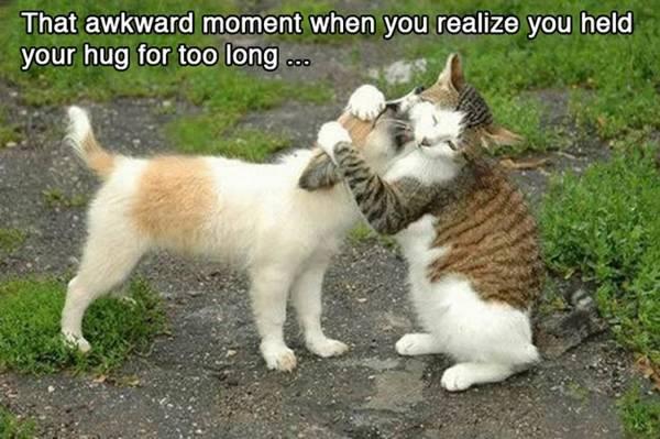 funny-awkward-situation- (9)