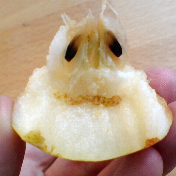 funny-fruits-36-photos (22)