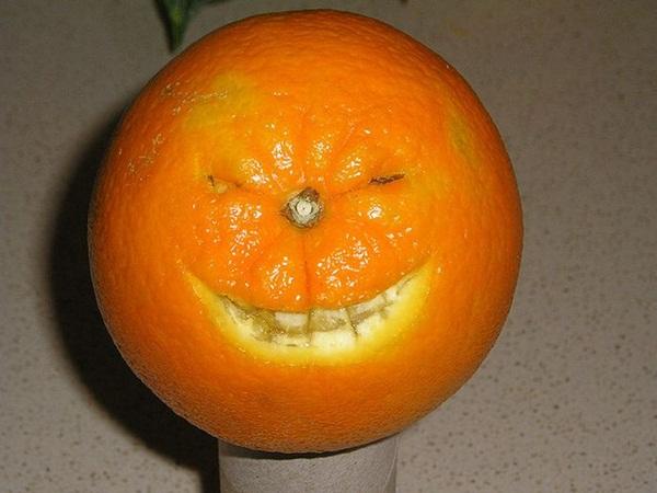 funny-fruits-36-photos (29)