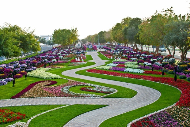 al-ain-paraidse-beautiful-flowers-park- (12)