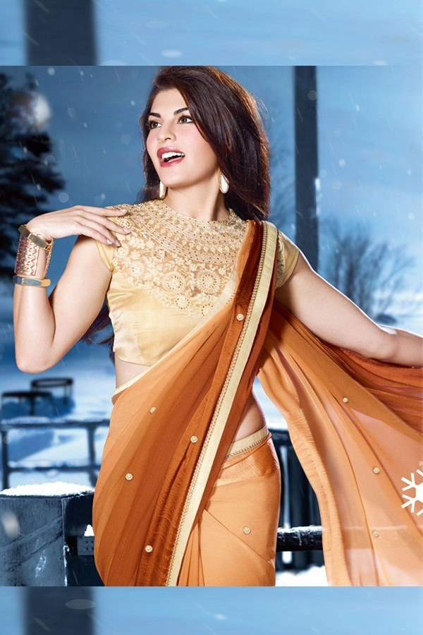 jacqueline-fernandez-saree-collection- (1) (3)