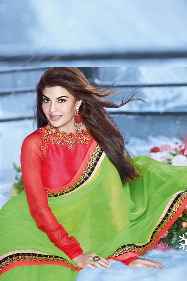 jacqueline-fernandez-saree-collection- (1) (57)