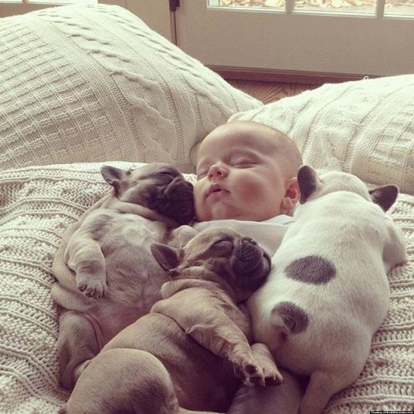 cute-babies-with-puppies- (7)