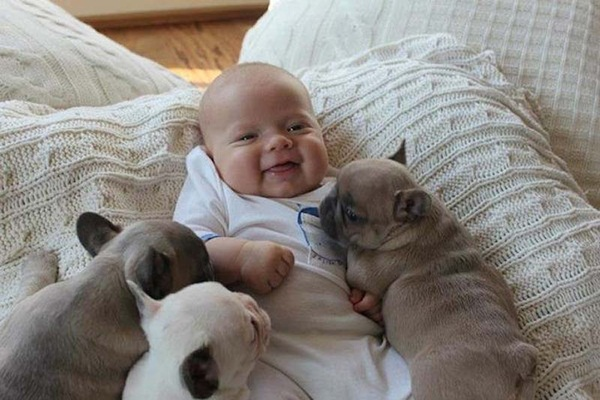 cute-babies-with-puppies- (8)