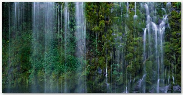 best-nature-18-photos- (9)