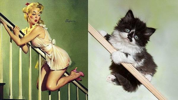 cats-imitate-the-girls- (18)