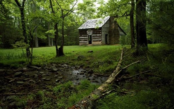 wood-house- (14)