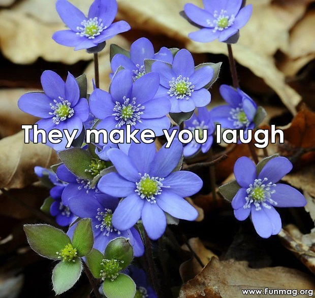 friends-are-like-flowers-friendship-cards- (5)