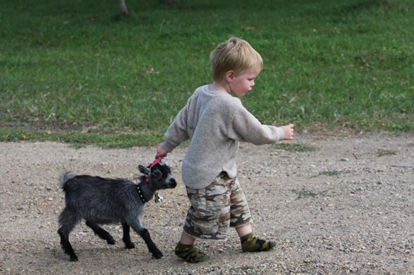 pictures-of-children-and-animals- (20)