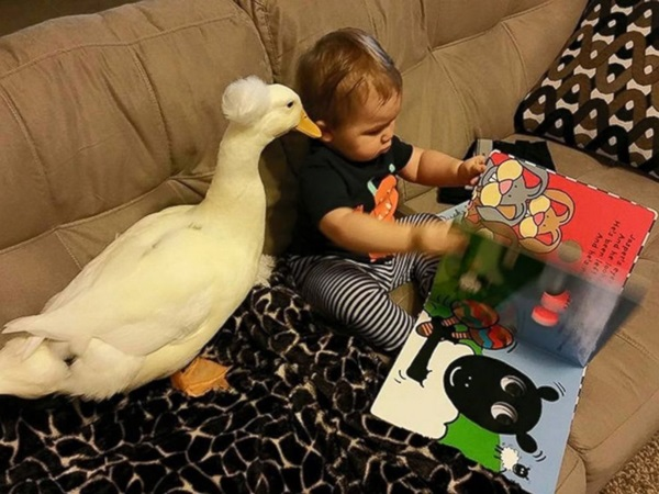 pictures-of-children-and-animals- (22)