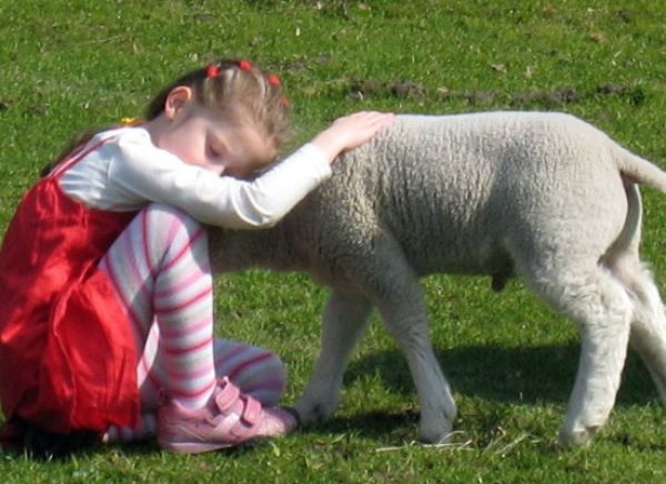 pictures-of-children-and-animals- (25)
