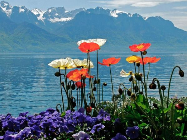 beautiful-switzerland-wallpaper-27-photos- (5)