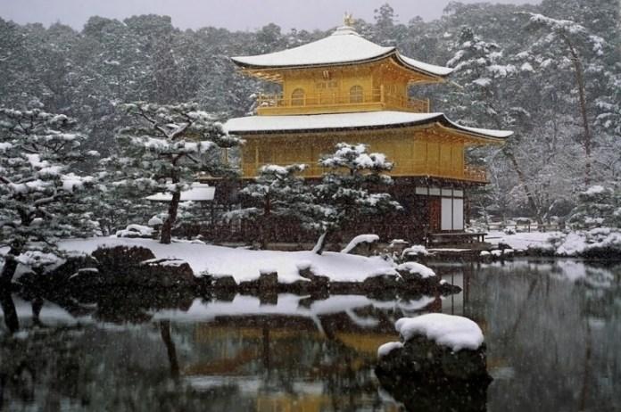 21-winter-photos- (10)