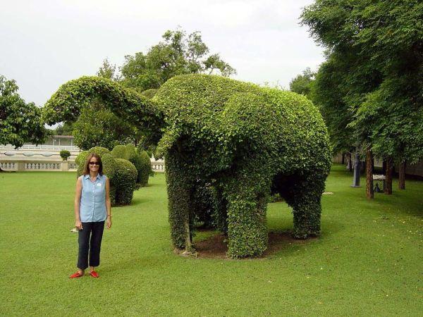 topiary-art- (14)