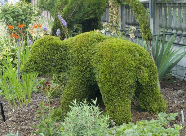 topiary-art- (2)