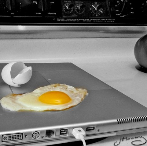 perfect eggs on your laptop