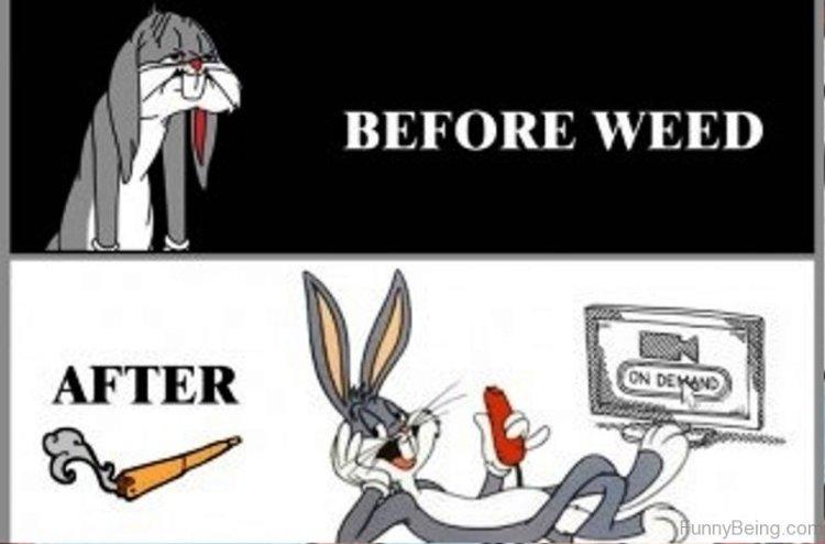 70 All Time Best Cartoon Memes