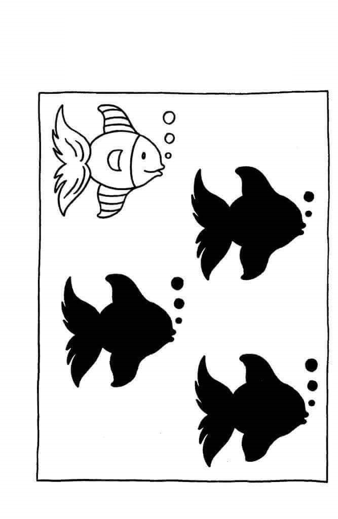 Fish Shadow Match 171 Preschool And Homeschool