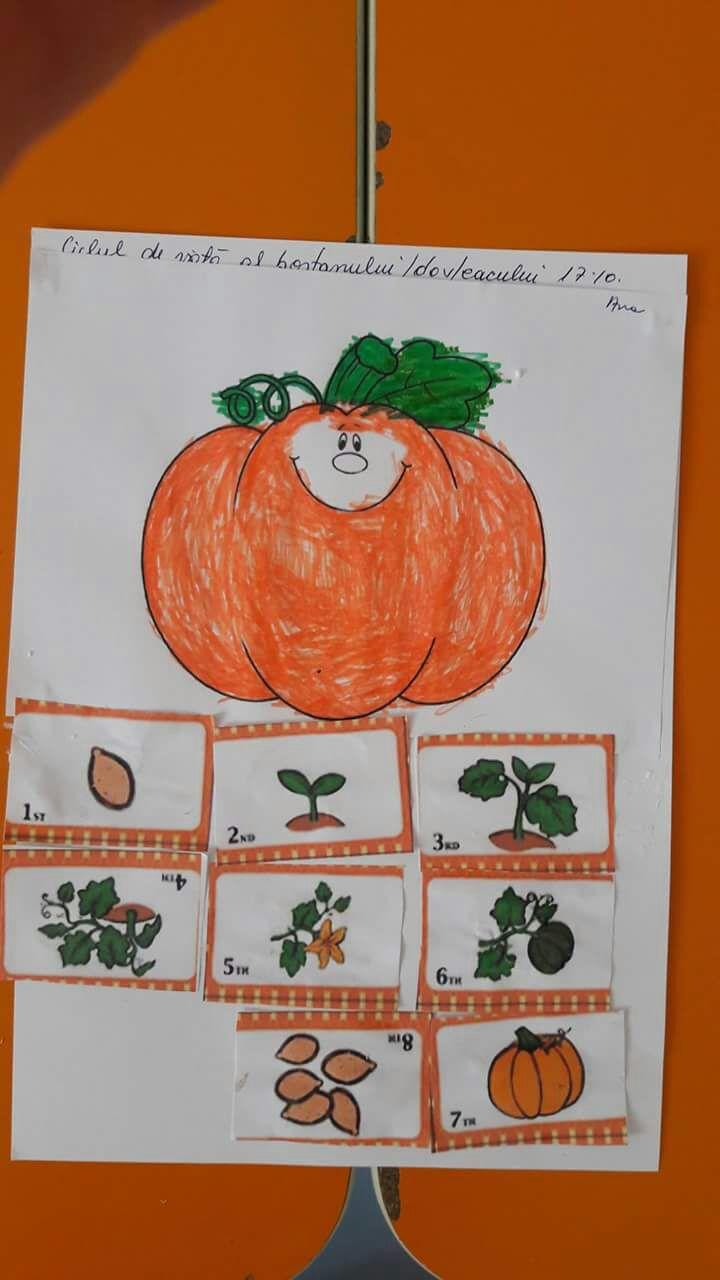 Fall Craft And Decorating Ideas Funny Crafts