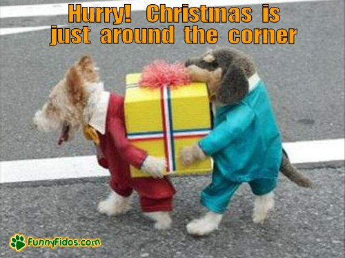 Image result for christmas is just around the corner