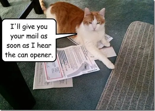 You get your mail when I head a can opener
