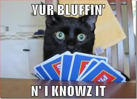 You are bluffing