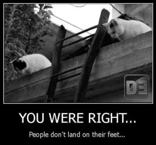 You were right - people don't land on their feet