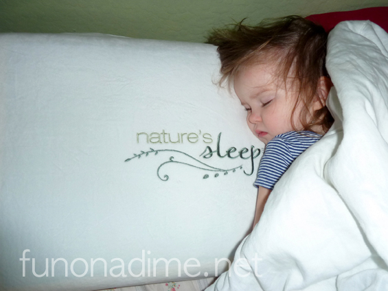 Nature's Sleep Pillow Review - Blog