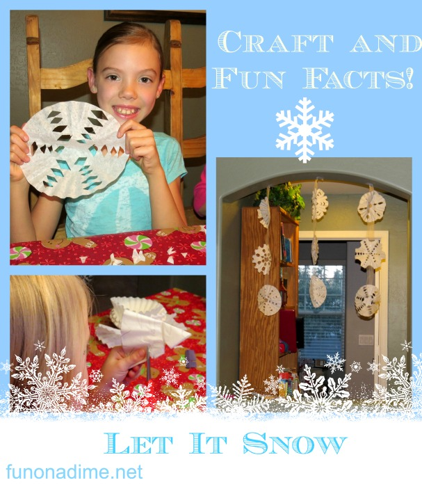 snow craft and facts!