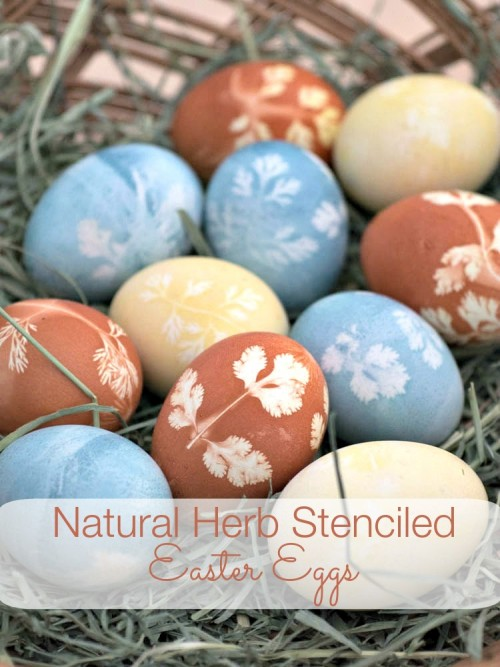 Natural Herb Stenciled Easter Eggs