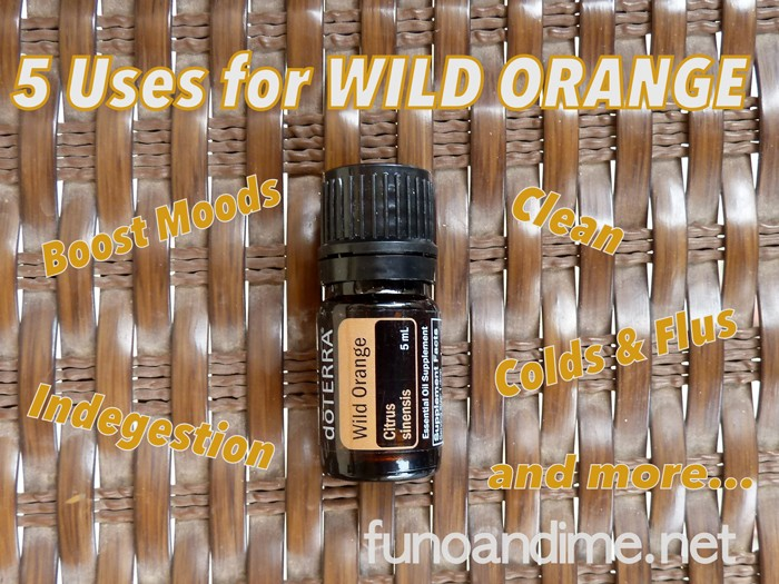 5 uses for Wild Orange Essential Oil