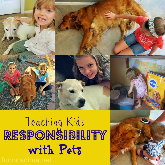 Teaching Kids Responsibility with Pets #PedigreeGives [Ad]