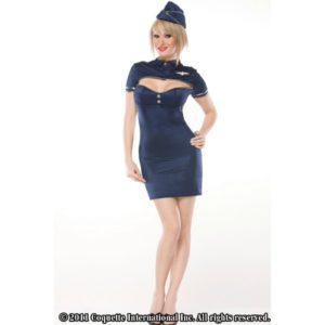Retro Stewardess Halloween Costume