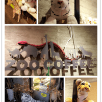 zoo_coffee_20141210_01