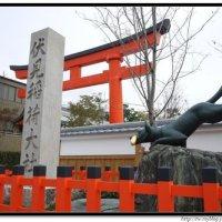 japan_0211_14