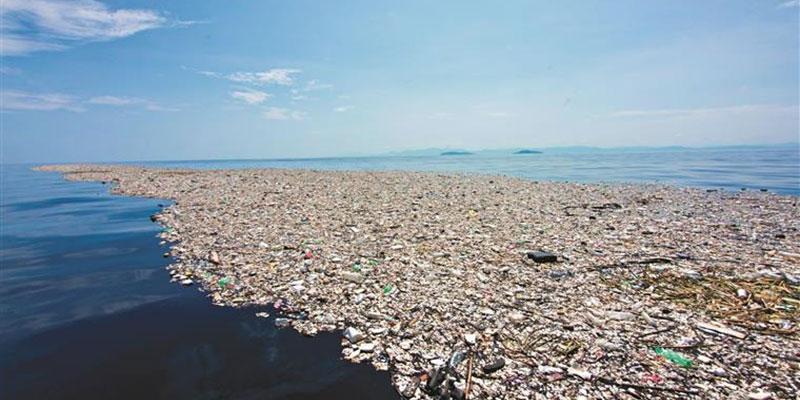 A Ilha De Plástico Do Pacífico Pode Ser A Maior, Mas Também Há Plásticos No Atlântico