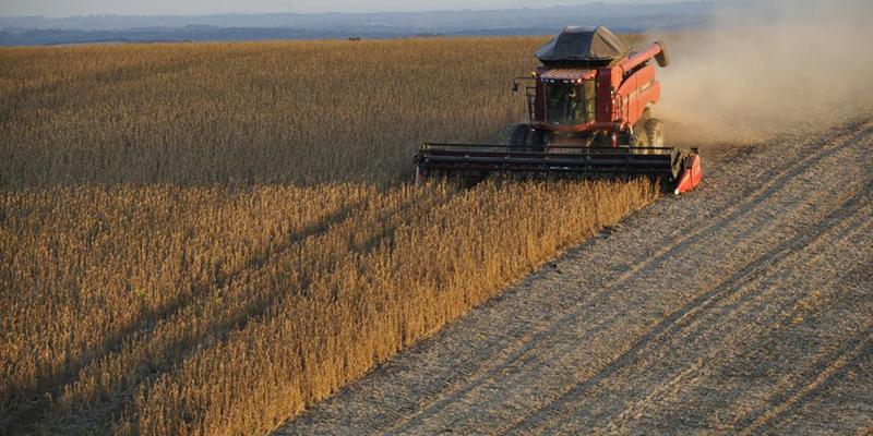 O Agro Não é Pop: Concentração Da Terra E Uso De Venenos Crescem Juntos