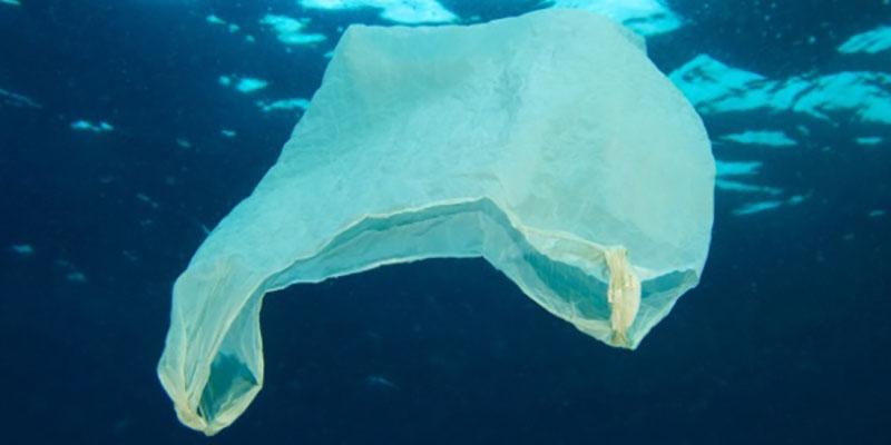 Plásticos Em Decomposição Emitem Gases Do Efeito Estufa