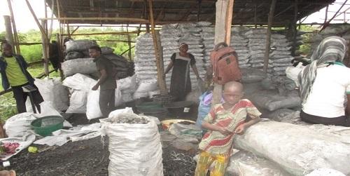 A Crescente População Da Nigéria Consome As Florestas