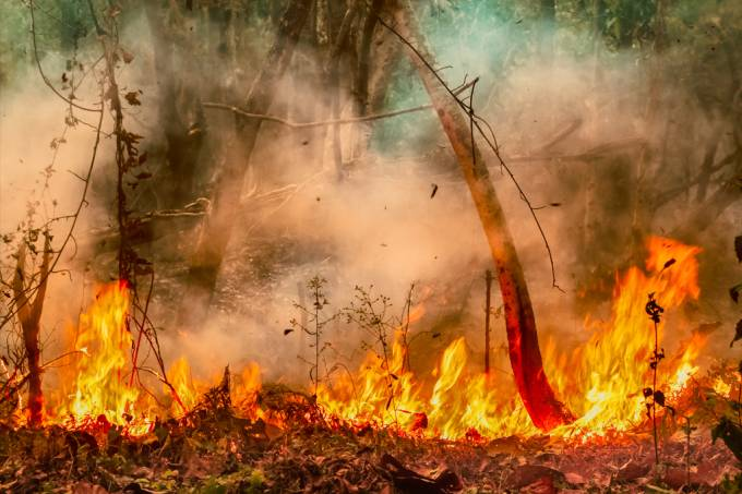 Efeito Dominó Irreversível Das Mudanças Climáticas Já Pode Estar Em Curso
