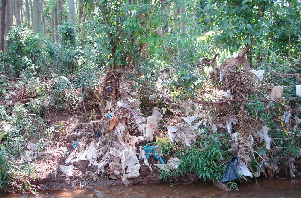 O Futuro Pós-pandemia é Do Plástico, E Ele Não Será Reciclado!