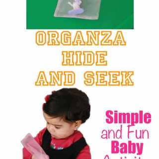 Organza Hide and Seek