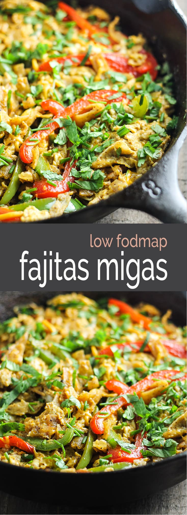 Try this Low Fodmap Fajita Migas recipe! It's filled with fresh flavors, crispy tortilla chips and CHEESE! Yum!