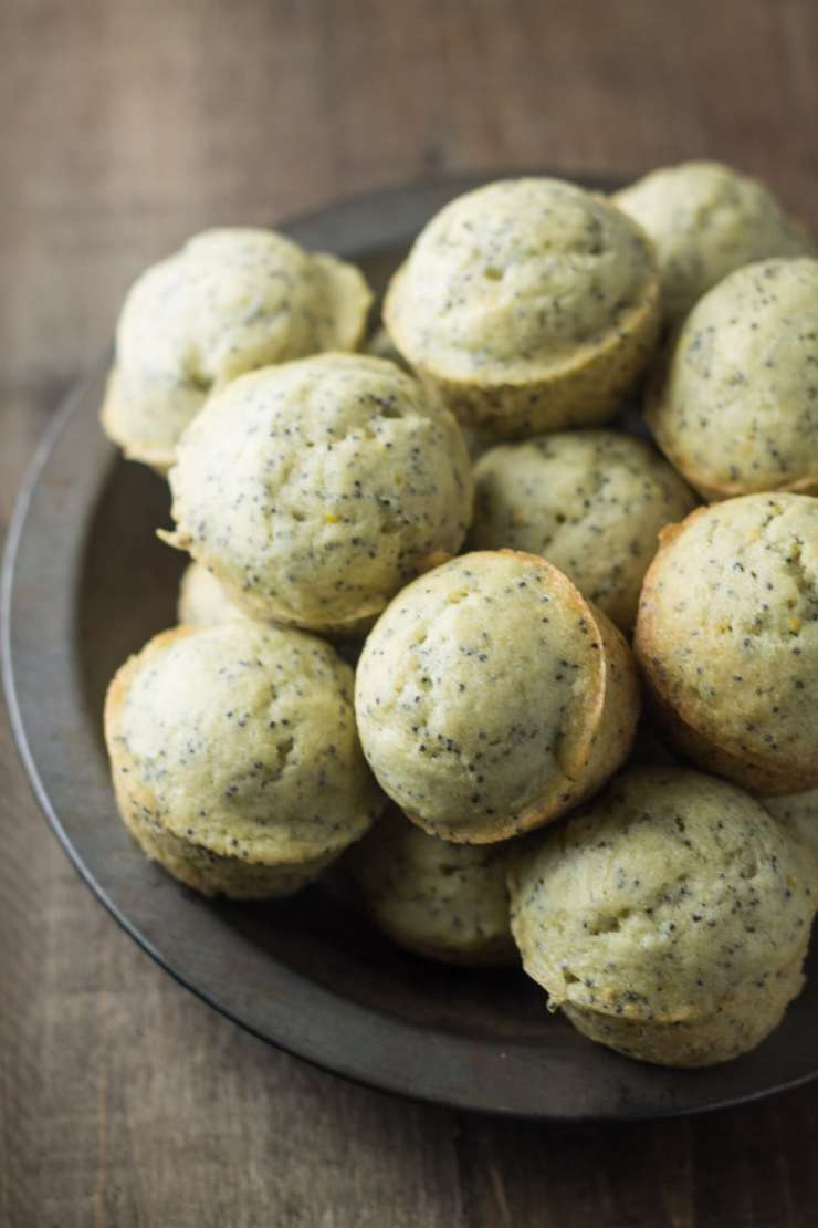 Spring-inspired Low Fodmap Lemon Poppy Seed Muffins are delicious and lightened-up, thanks to olive oil. They're also gluten free and dairy free!