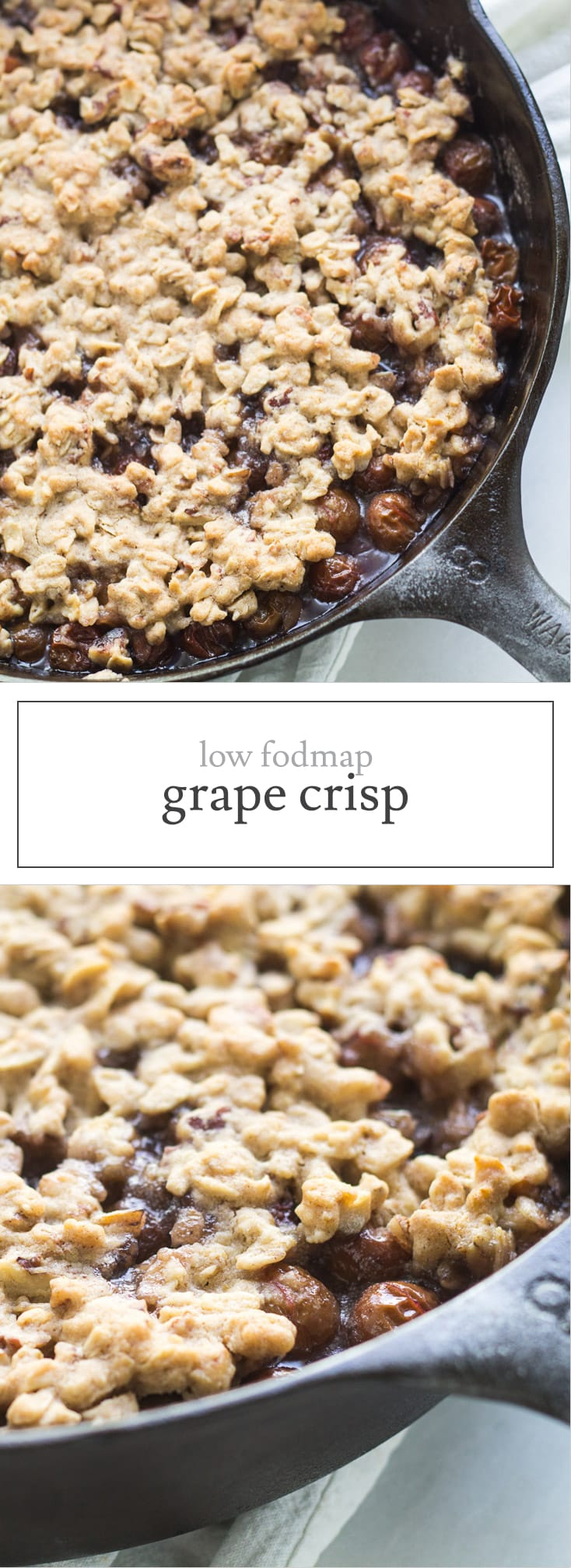 Grapes may be more commonly enjoyed fresh, but they are the star of this scrumptious Low Fodmap Grape Crisp! It's gluten free, too!