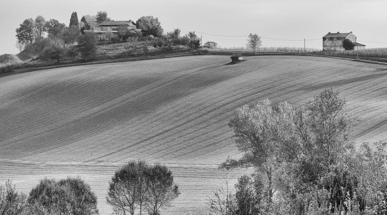 Astigiano ©FuoriFuoco.it