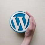 【運営報告】WordPressと独自ドメインで2ヶ月雑記ブログを運営してみて