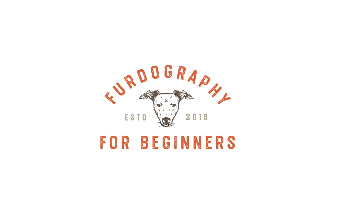 FurDography for Beginners