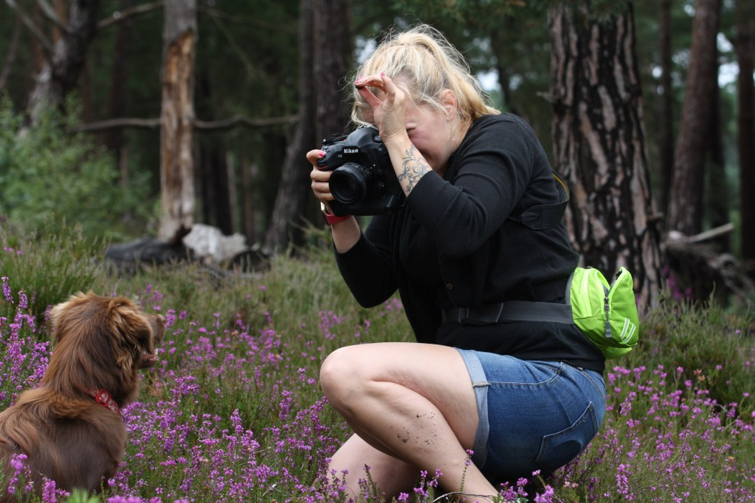 Dog photographer crouching down with camera and treat held above it photographing a dog